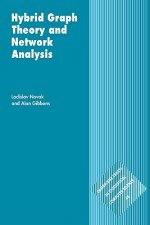 Hybrid Graph Theory and Network Analysis