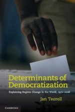 Determinants of Democratization