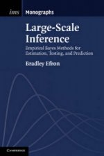 Large-Scale Inference