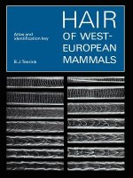 Hair of West European Mammals