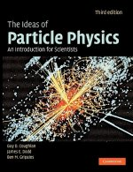 Ideas of Particle Physics