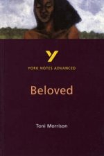 York Notes on Toni Morrison's Beloved