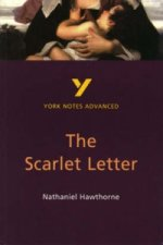 Scarlet Letter: York Notes Advanced