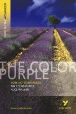 Color Purple: York Notes Advanced
