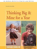 Thinking Big/mine for a Year
