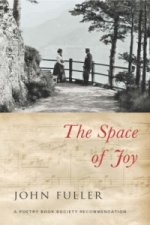 Space of Joy