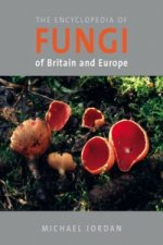 Encyclopedia of Fungi of Britain and Europe