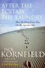 After the Ecstacy, the Laundry