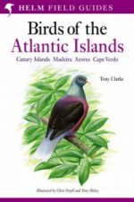 Field Guide to the Birds of the Atlantic Islands
