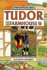 Tudor Farmhouse