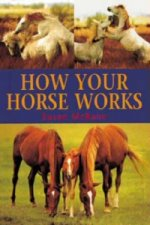 How Your Horse Works
