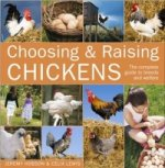 Choosing and Raising Chickens