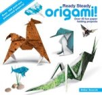 Ready Steady Origami