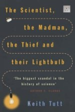 Scientist, the Madman, the Thief and Their Lightbulb