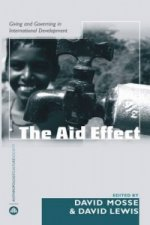 Aid Effect