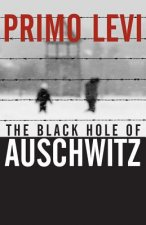 Black Hole of Auschwitz