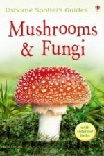 Mushrooms and Funghi