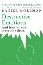 Destructive Emotions
