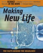 Making New Life