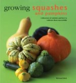Growing Squashes and Pumpkins