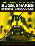 Deadly World of Bugs, Snakes, Spiders, Crocodiles and Hundreds of Other Amazing Reptiles and Insects