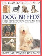 Illustrated Guide to Dog Breeds