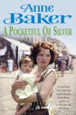 Pocketful of Silver