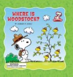 Where is Woodstock?