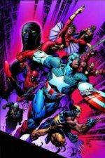 New Avengers Vol.3: Secrets & Lies