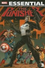 Essential Punisher