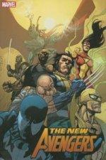 New Avengers Vol.3