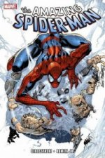 Amazing Spider-Man by JMS - Ultimate Collection Book 1
