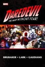 Daredevil By Ed Brubaker & Michael Lark Vol.2