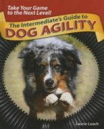 Intermediates Guide to Dog Agility