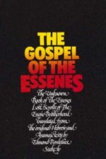 Gospel of the Essenes