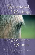 Emotional Healing for Horses and Ponies