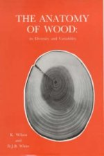 Anatomy of Wood, Its Diversity and Variability