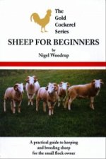Sheep for Beginners