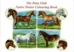 Pony Club Native Ponies Colouring Book