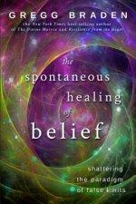 Spontaneous Healing of Belief