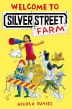Welcome to Silver Street