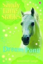 Dream Pony