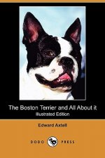 Boston Terrier and All About it