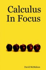 Calculus In Focus