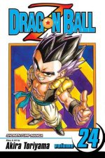 Dragon Ball Z, Vol. 24