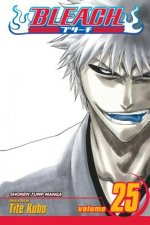 Bleach, Vol. 25