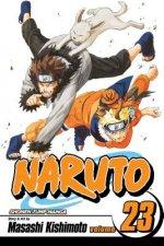 Naruto, Vol. 23