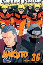 Naruto, Vol. 36