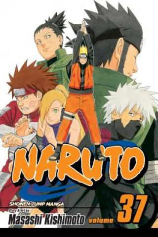 Naruto, Vol. 37