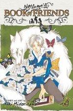 Natsume's Book of Friends, Vol. 2